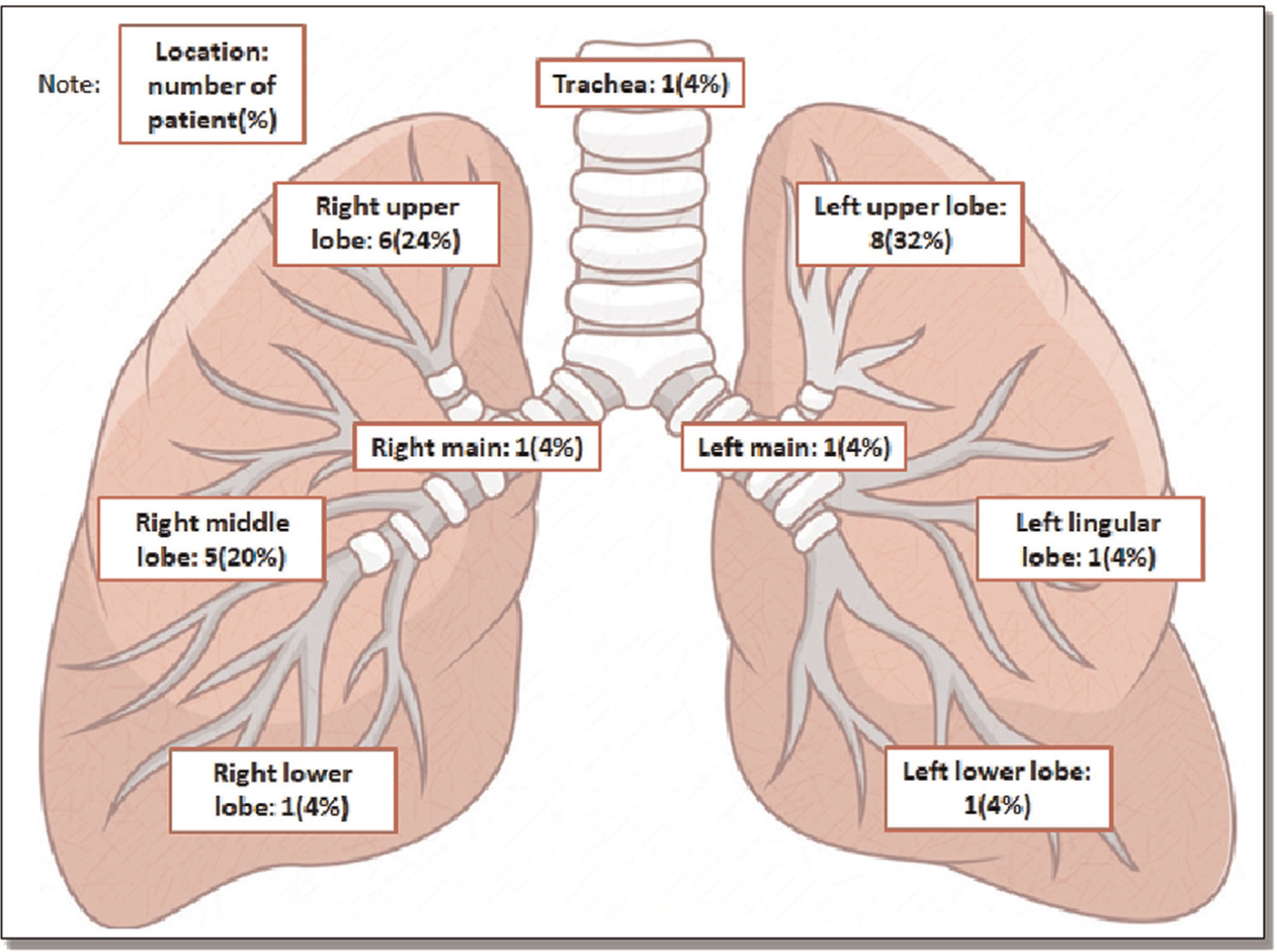 Figure 2 Distribution of bronchoscopic abnormalities among patients with EBTB. EBTB = endobronchial tuberculosis.